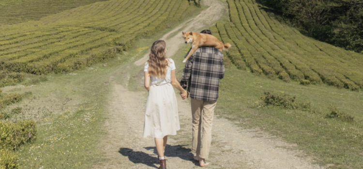 The grass is not always greener on the other side. 20 simple ways to keep your marriage alive!